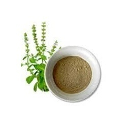 Service Provider of Herbal Powder Mandsaur Madhya Pradesh